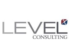 Level X Consulting
